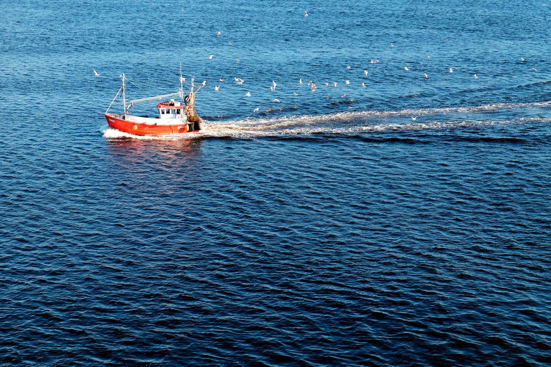Рубацкая лодка