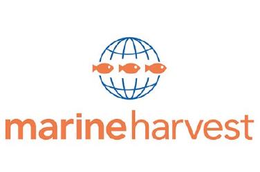 MARINE HARVEST FAROE