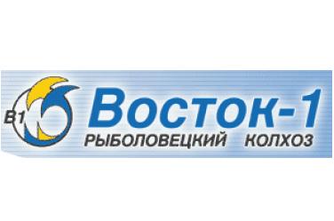 «ВОСТОК-1»